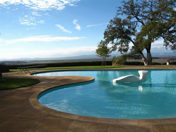 49 mod les piscine creus e en forme de rein. Black Bedroom Furniture Sets. Home Design Ideas