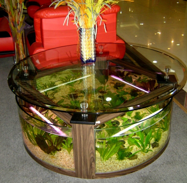 table-basse-ovale-aquarium