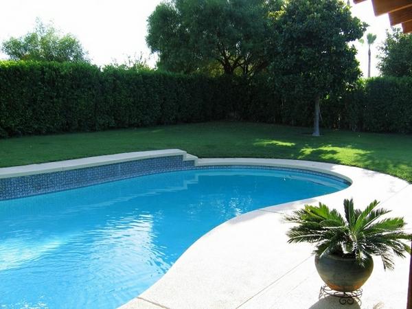 unque-piscine-creusée-en-form-de-rein