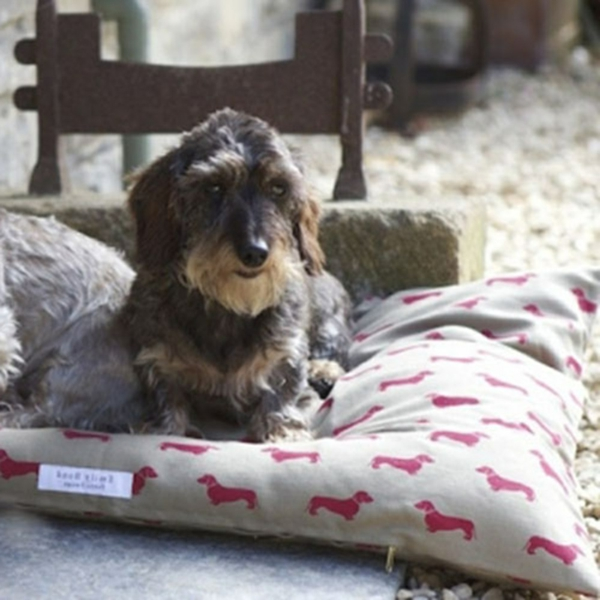 Dog-Pillow-Bed-Dachshund-Lifestyle-resized