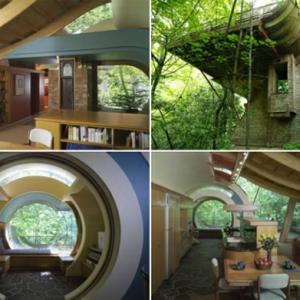 Inhabituelle- la maison de la forêt en matériaux naturels
