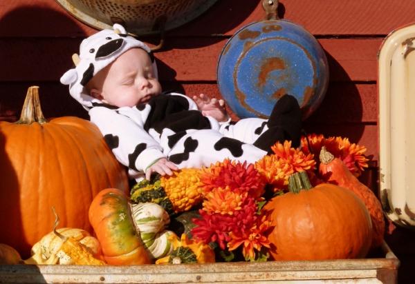 bebe-halloween