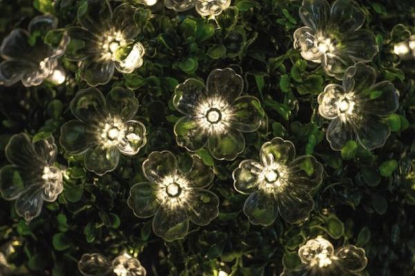 fleur-guirlandes-lumineuses-exterieur