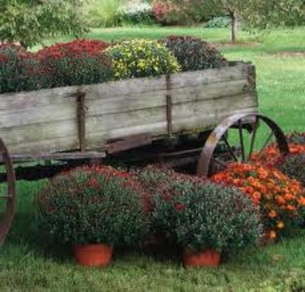 idée-déco-de-jardin-original
