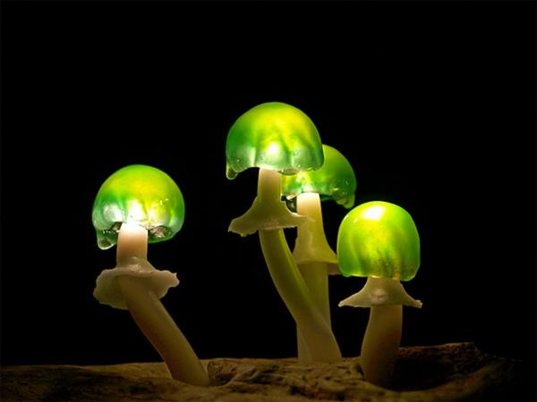 lampe-champignon-féérique