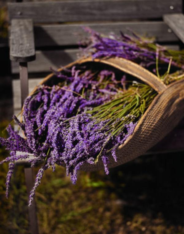 lavender-basket-0908-de-59861936-resized