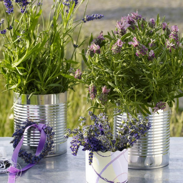 lavender-home-decorating-ideas-5-resized