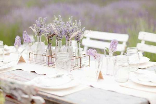 lavender5-resized