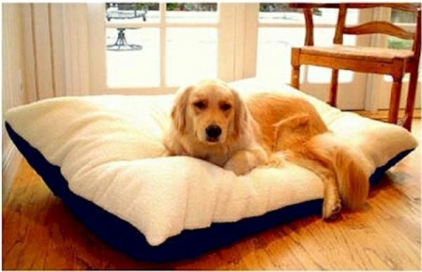 majestic-pet-rectangular-pillow-bed-blue-resized