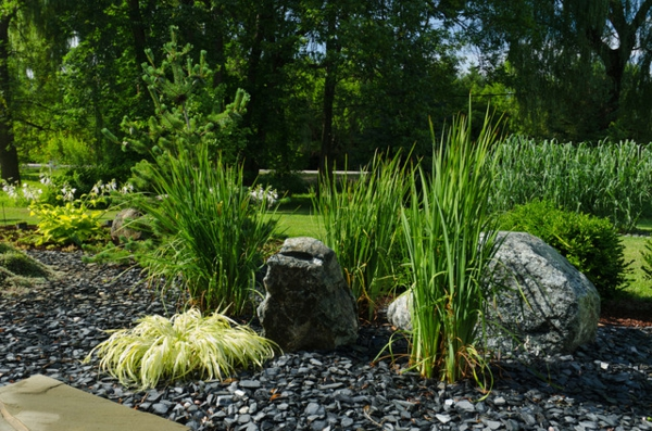 Le paillage ardoise cr e une d coration l gante co pour for Photo de jardin moderne