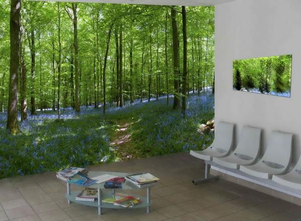 poster-mural-trompe-l' oeil-forêt-vert