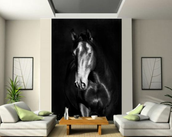 poster-mural-trompe-l' oeil-une-photo-cheval
