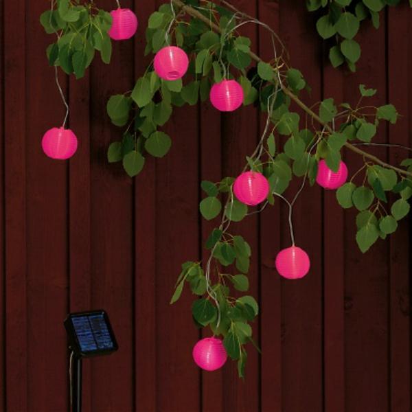 rose-guirlande-lumineuse-exterieur
