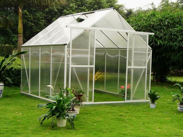 serre-de-jardin-en-polycarbonate-herbe-verte