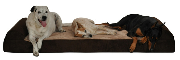 three-dog-bed-600-resized