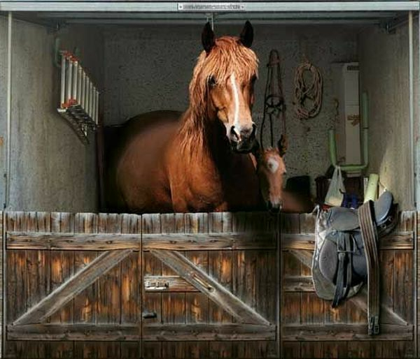 trompe-l' oeil-pour-porte-de-garage-chevaux