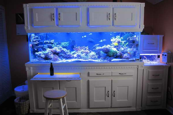 aquarium d interieur design est un meuble tr s original et actuel la table basse en aquarium. Black Bedroom Furniture Sets. Home Design Ideas