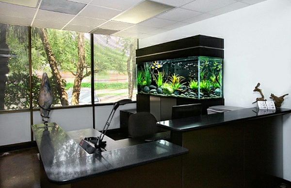 aquarium-office-ameublement