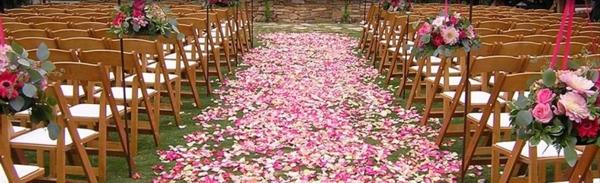 chemin-des-roses-rose