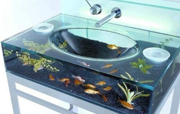 bassin-aquarium