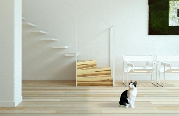 escalier-flottant-plzncher-en-bois-et-un-chat-domestique
