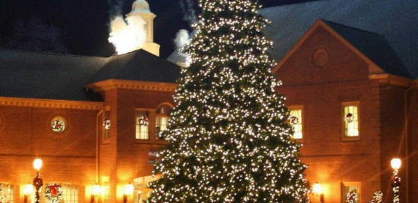 extraordinary-big-outdoor-christmas-trees-with-lights-decorations-615x300-resized