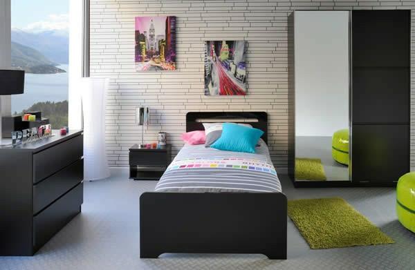 meubles-parisot-petit-tapis-vert-un-armoire-avec-miroir