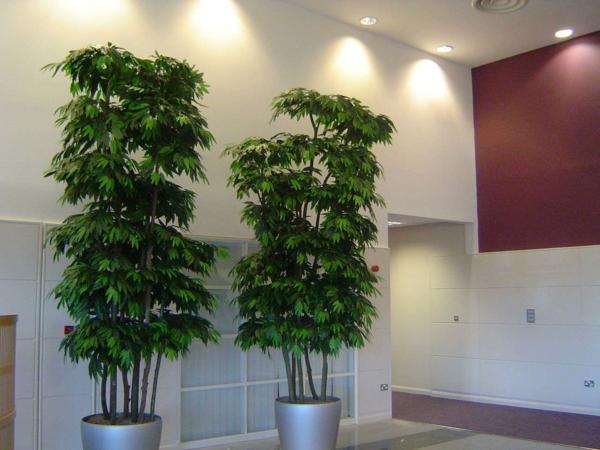 plantes-artificielles-arbres-artificiels