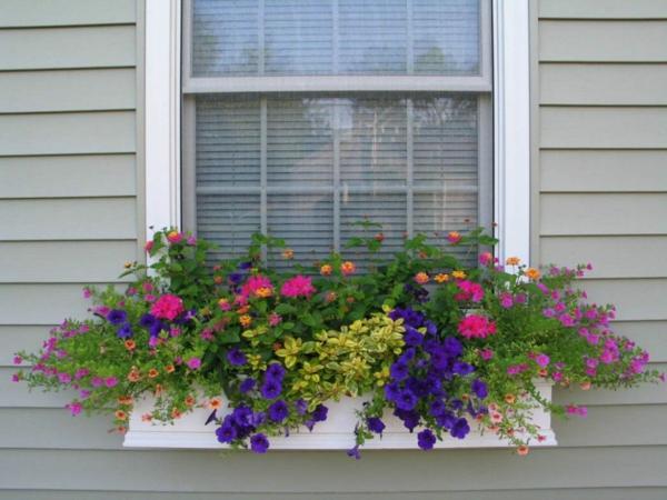 plantes-artificielles-décoration-d'une-fenêtre