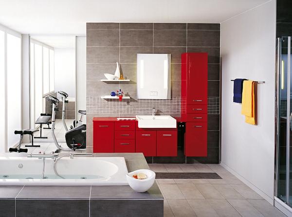 la salle de bain schmidt beaut et innovations. Black Bedroom Furniture Sets. Home Design Ideas