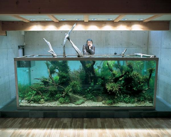 unique-aquarium-naturel