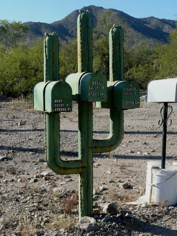 cactus-boite-de-lettre