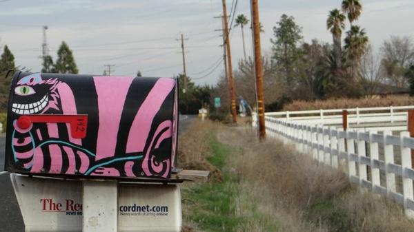 cool-peinture-sur-une-boite-postal-en-rose-et-noir