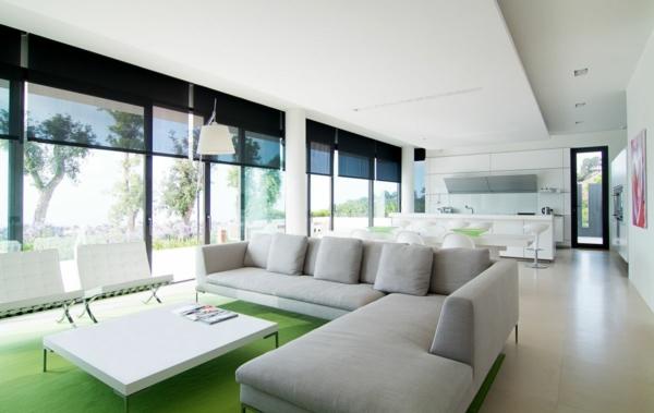 intérieur-de-la-maison-contemporaine-avec-du-canapé-et-un-tapis-vert