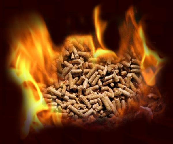poêle-à-pellets-pellets-en-flammes