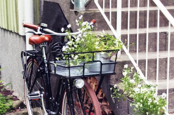 vélo-pour-des-fleurs-du-jardin