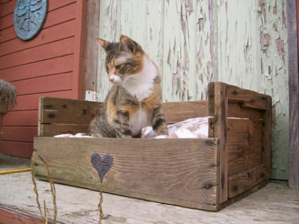 Id es originales de meubles en palettes - Comment fabriquer un lit pour chat ...