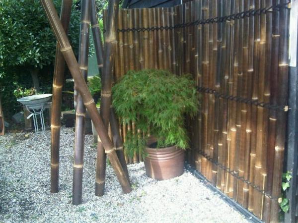 canisse-bambou-et-canes-de-bambou