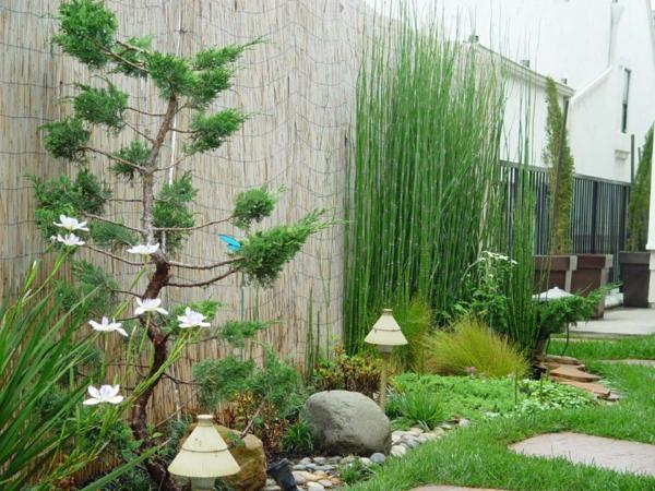 canisse-bambou-idée-magnifique-de-jardin-exotique-avec-une-canisse-en-bambou