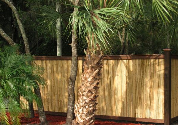 La Canisse Bambou Une Cl Ture De Jardin Jolie Et Cologique