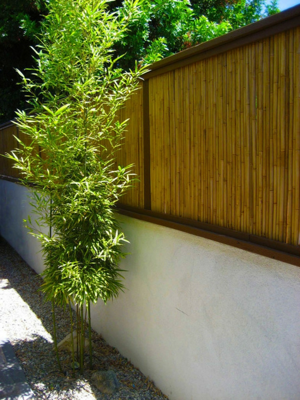 Jardin avec bambou deco jardin avec bambou treillage en for Jardin zen avec bambou