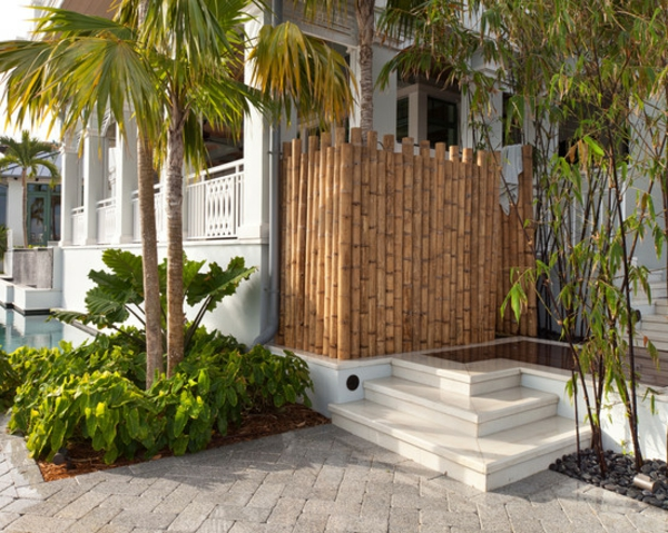 canisse-bambou-une-maison-et-plantes-exotiques