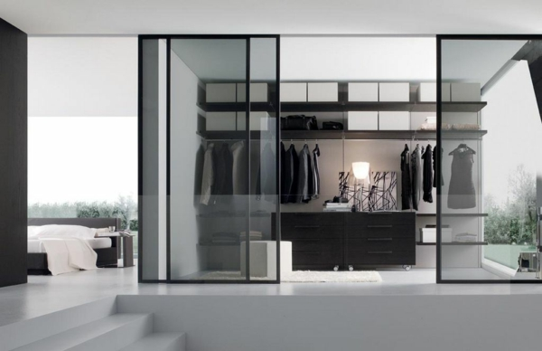 élégant-porte-en-vitre-noir-transparante