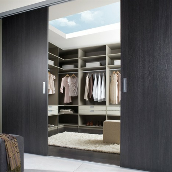 la porte coulissante de dressing. Black Bedroom Furniture Sets. Home Design Ideas