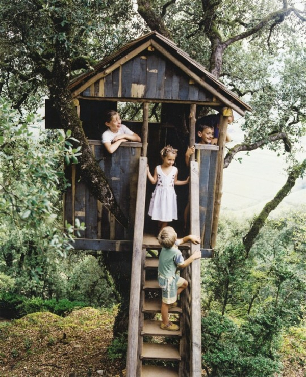 kids-clubhouse-and-tree-house-ideas-540x666-resized