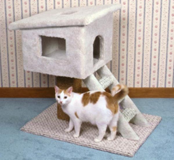 maisonnette-pour-chat-avec-échelle