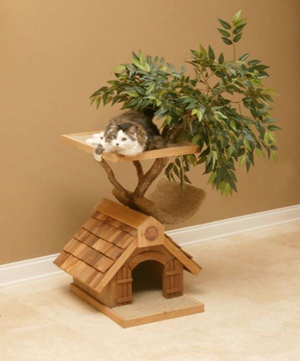 maisonnette-pour-chat-avec-bonsai