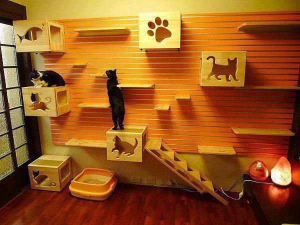 maisonnette-pour-chat-des-maisonnettes-murales-pour-chats