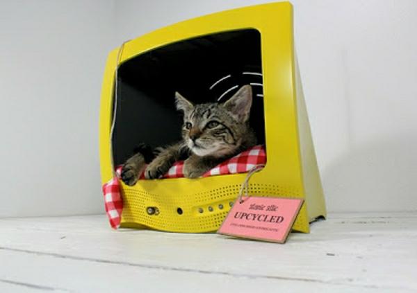 maisonnette-pour-chat-design-créatif