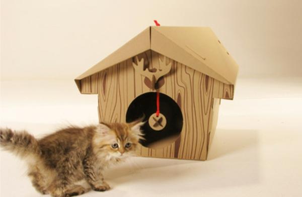 maisonnette-pour-chat-le-petit-chaton-et-sa-maison